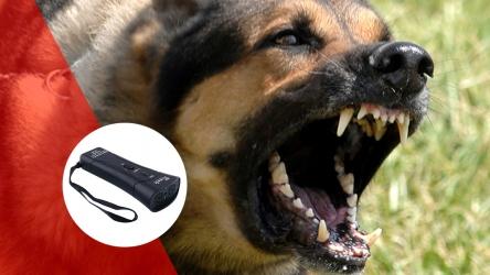 Barxstop: el nuevo y perfecto dispositivo anti-ladridos