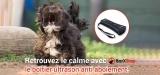 Avis sur BarxStop, la boîte à ultrason pour chiens