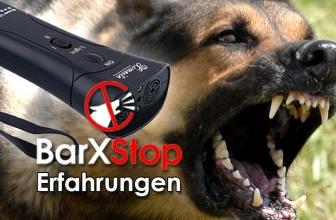 BarxStop: Mit Ultraschall gegen lästiges Hundegebell